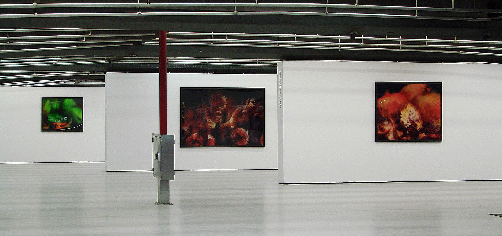 mortos - vivos, Centro Cultural São Paulo