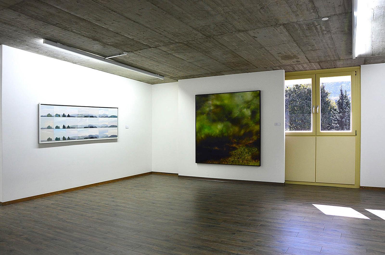 Auf unbekanntem Terrain, Sammlung Hurrle Museum für aktuelle Kunst